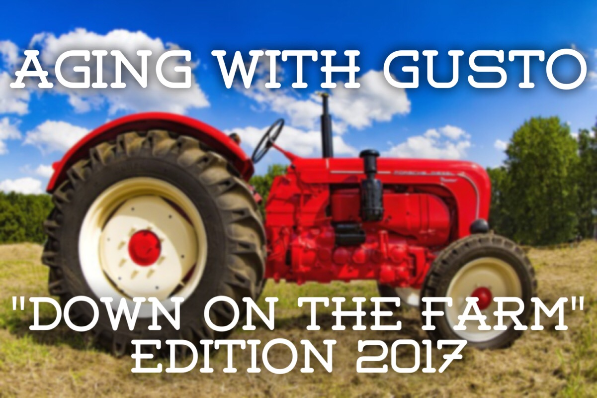 Aging with Gusto 2017 poster
