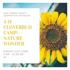 Cover photo for 4-H Cloverbud Camp: Nature Wonder Registration Now Open