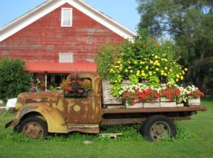 old truck with flowers