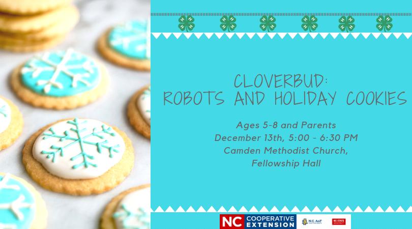 Cloverbud flyer image