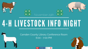 Cover photo for 4-H Livestock Info Night