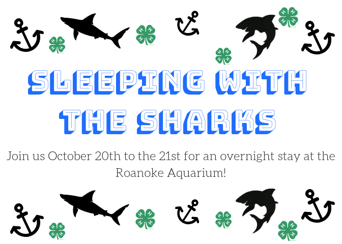 Sleeping with the Sharks flyer image