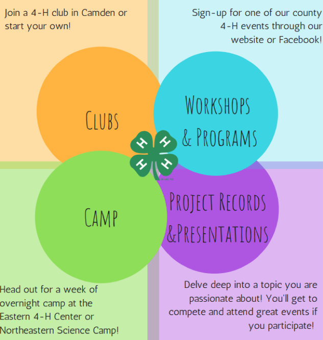 Ways to Get Involved with 4-H in Camden