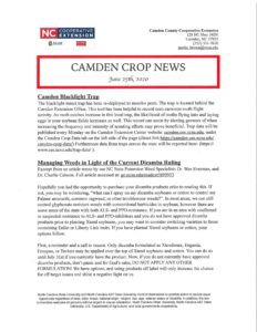 Cover photo for Camden Crop News: June 25, 2020