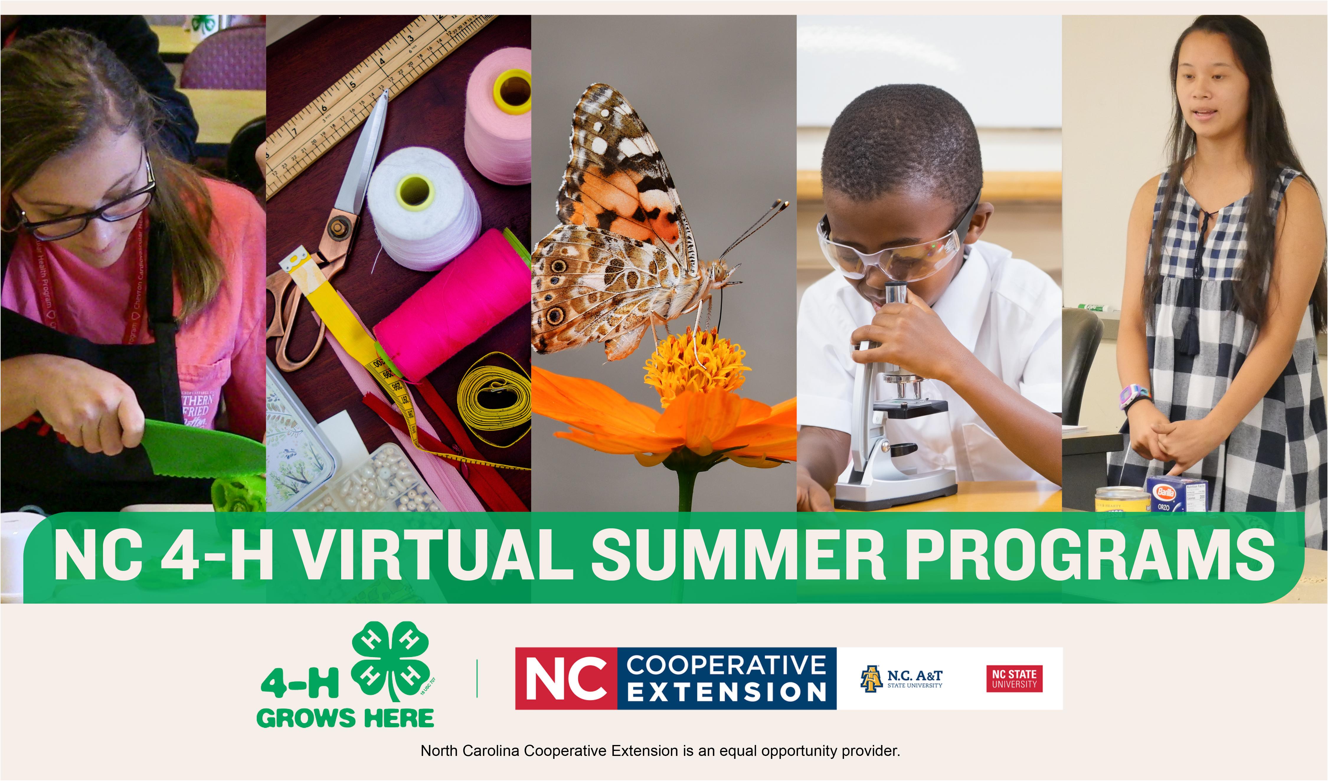 4-H Virtual Programs