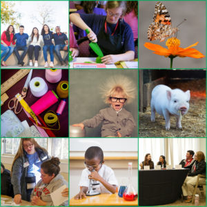 Cover photo for NC 4-H Virtual Summer Programs