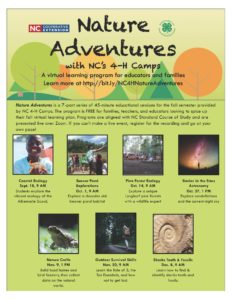Cover photo for Nature Adventures