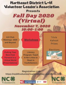 Cover photo for Northeast District 4-H Volunteer Leader's Association Hosts Virtual Fall Day 2020