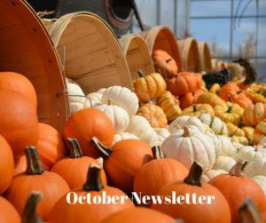 Cover photo for Camden 4-H Newsletter:  October 2020