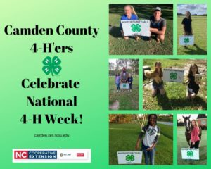 Cover photo for Celebrating National 4-H Week