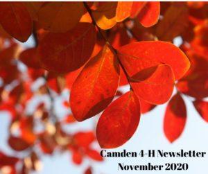 Cover photo for Camden County 4-H Newsletter: November 2020
