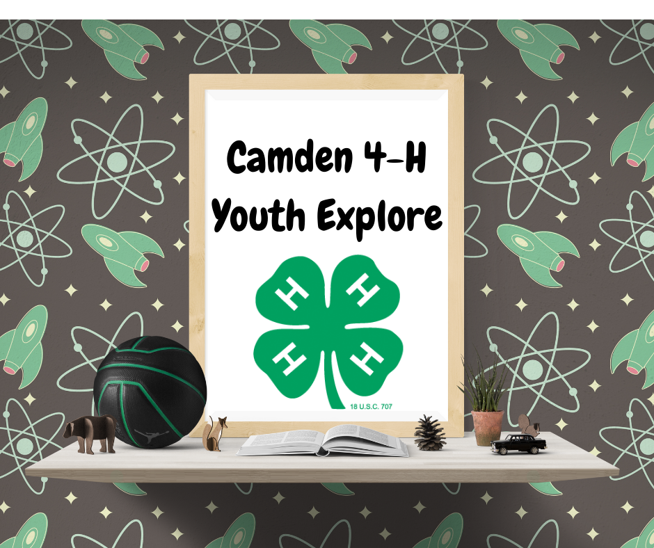 Youth Explore header image