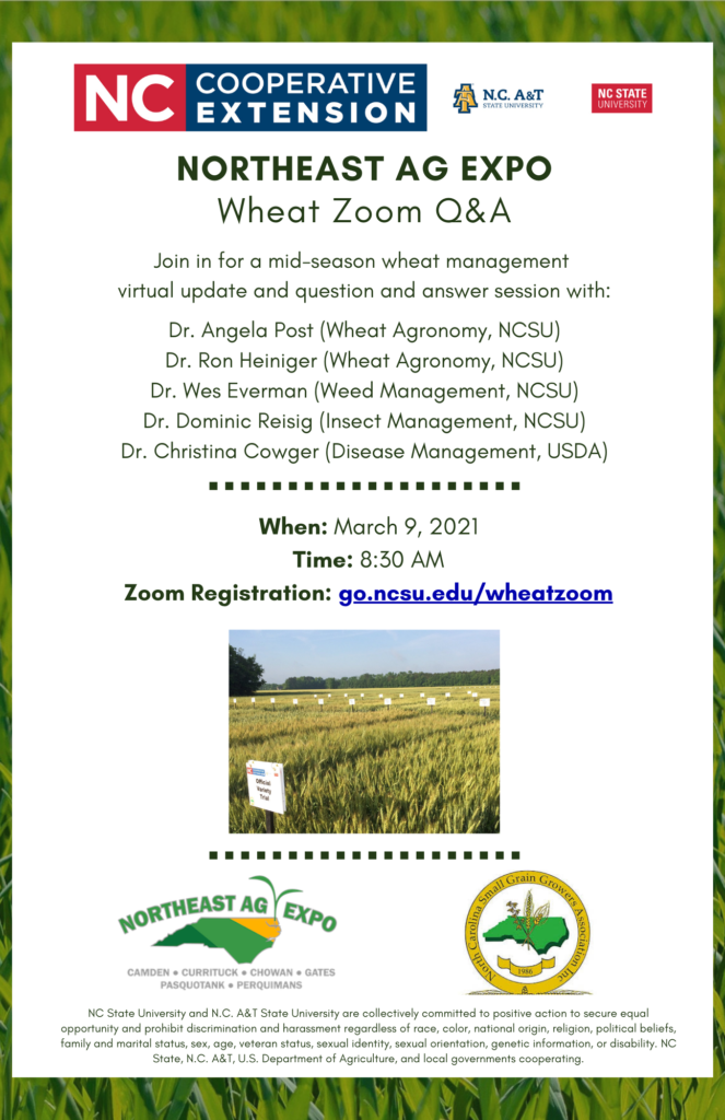 Wheat Zoom Q&A flyer image